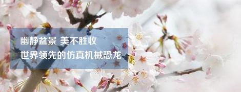 上海滨海森林公园拓展训练基地
