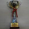 2010年度中国拓展杰出贡献奖