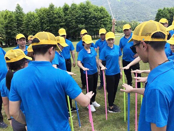 拓展训练项目——不倒森林|拓展训练