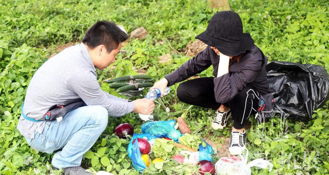 野外埋锅造饭进行体验生活,在城市中生活的人们并没有太多体验埋锅造饭的乐趣,想体验一下孤岛上团队集体制作美食的过程。